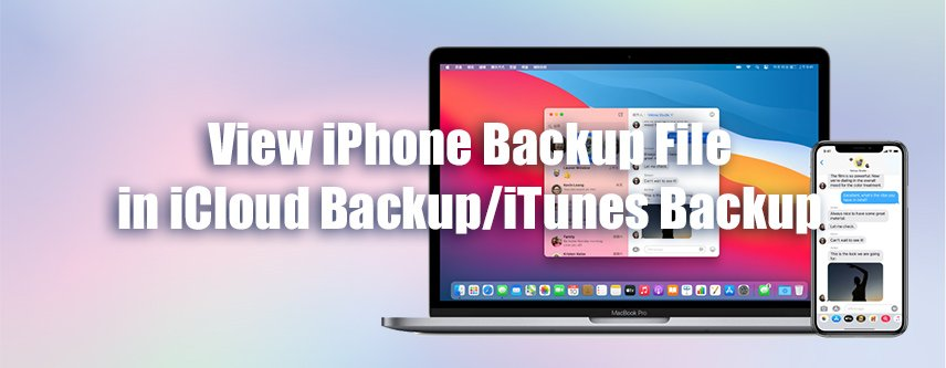 View iPhone Backup Files