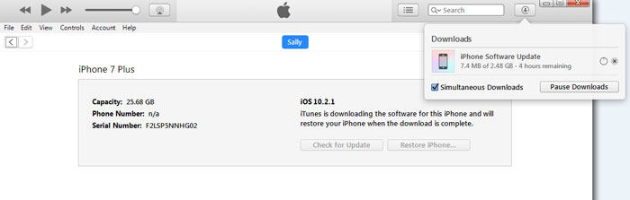 Download Software Update iTunes iPhone