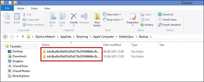 iTunes Backup File Location on Windows