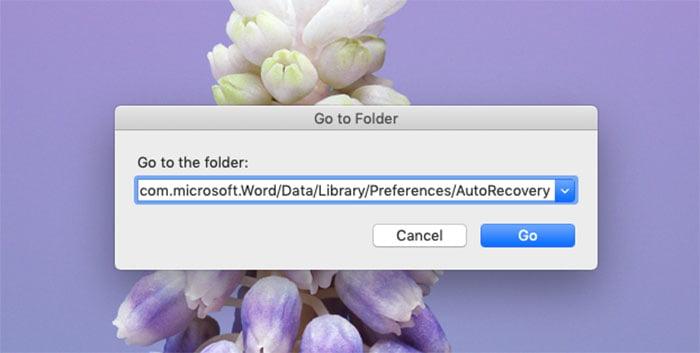autorecovery folder mac