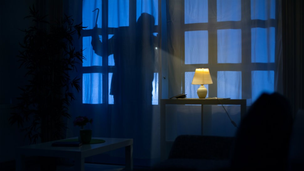 Prevent your Home from Burglars